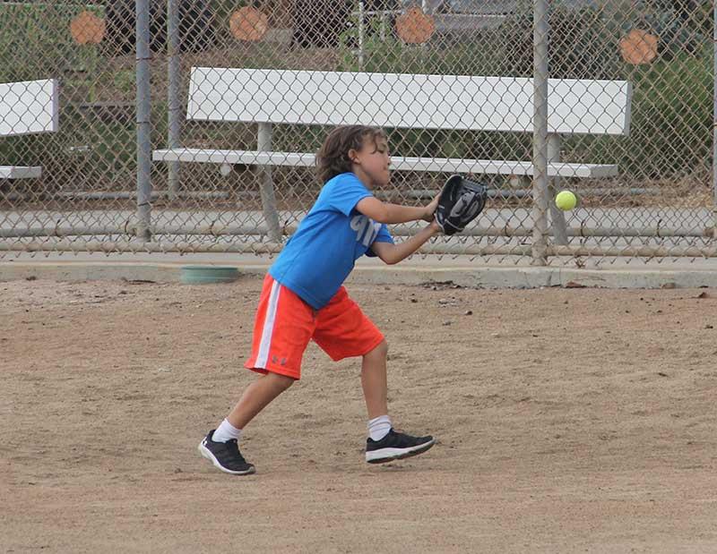 cardiff-baseball-008
